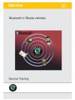 SSP 081 Bluetooth in SKODA cars